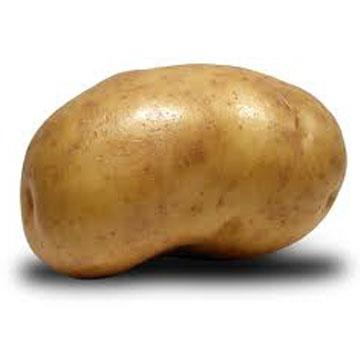 Πατάτα … η Δημοφιλής