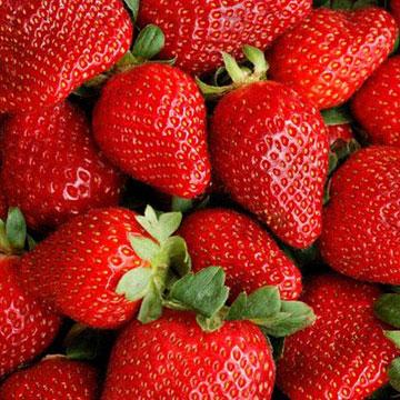 Φράουλα … Κόκκινος Γευστικός Πειρασμός