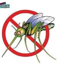 Πως να Απαλλαγείτε από τα Έντομα με Φυσικό Τρόπο