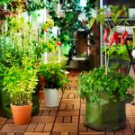 Σεμινάρια Κηπουρικής στο ΙΚΕΑ