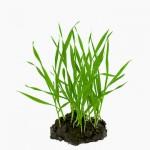 Στην Αγία Βαρβάρα η Πρώτη «Πράσινη» Γειτονιά
