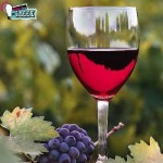 Διαλέξτε το Κατάλληλο Κρασί για Κάθε Φαγητό